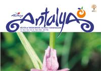 Antalya'nın Gizli Hazinesi Endemik Bitkilerini Bizimle Keşfedin!